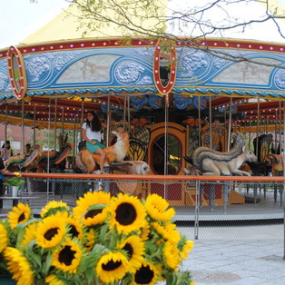 Greenway Carousel at the Tiffany & Co. Foundation Grove