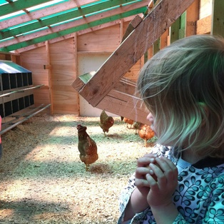 Egg-cellent Easter Adventure: Celebrate Spring on the Farm