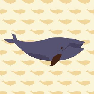 Massachusetts Whale Trail