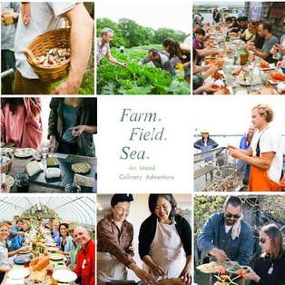 Farm. Field. Sea. Martha's Vineyard - An Island Culinary Adventure