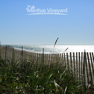 Martha's Vineyard Rentals