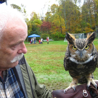 Up Close: Live Birds of Prey