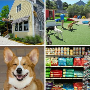 Provincetown Pet Resort & Supply