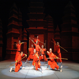 Shaolin Warriors: Voices of Masters