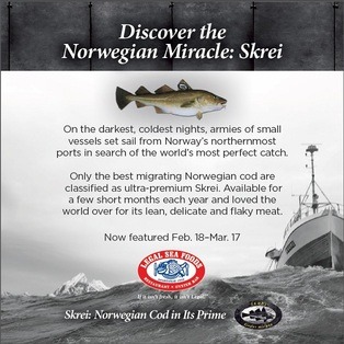 The Norwegian Miracle - Skrei