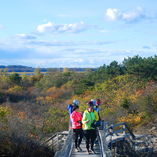 Salt Marsh & Songbirds Eco-Bike Tour