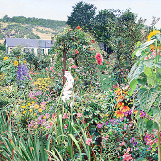 Anna Coniaris Comolli - Revisiting Monet's Garden
