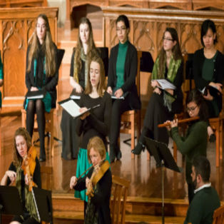 Collegium Musicum Early Music Ensemble