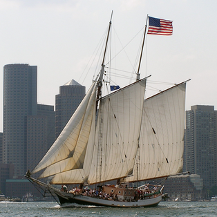 The Liberty Fleet of Tall Ships