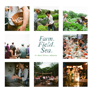Join Farm.Field.Sea. a 'sleeves-up and hands-dirty' adventure on the island of Martha's Vineyard