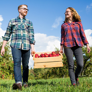 8 Orchards to Visit this Fall